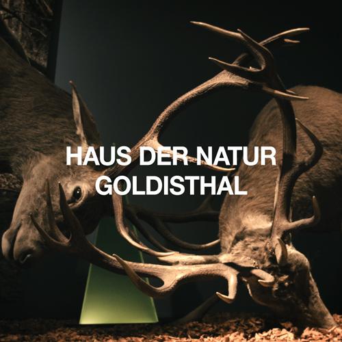 Haus der Natur in Goldisthal
