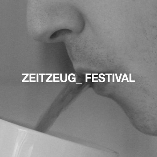 Zeitzeug_ Festival